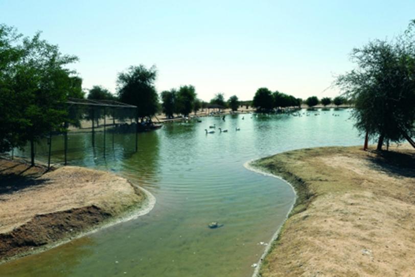 Saih Al Salam Lakes