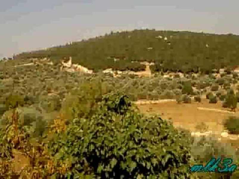 Zlama Reserve