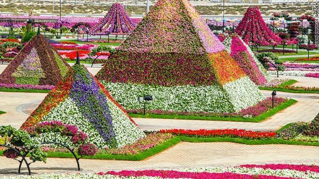 45 million flower