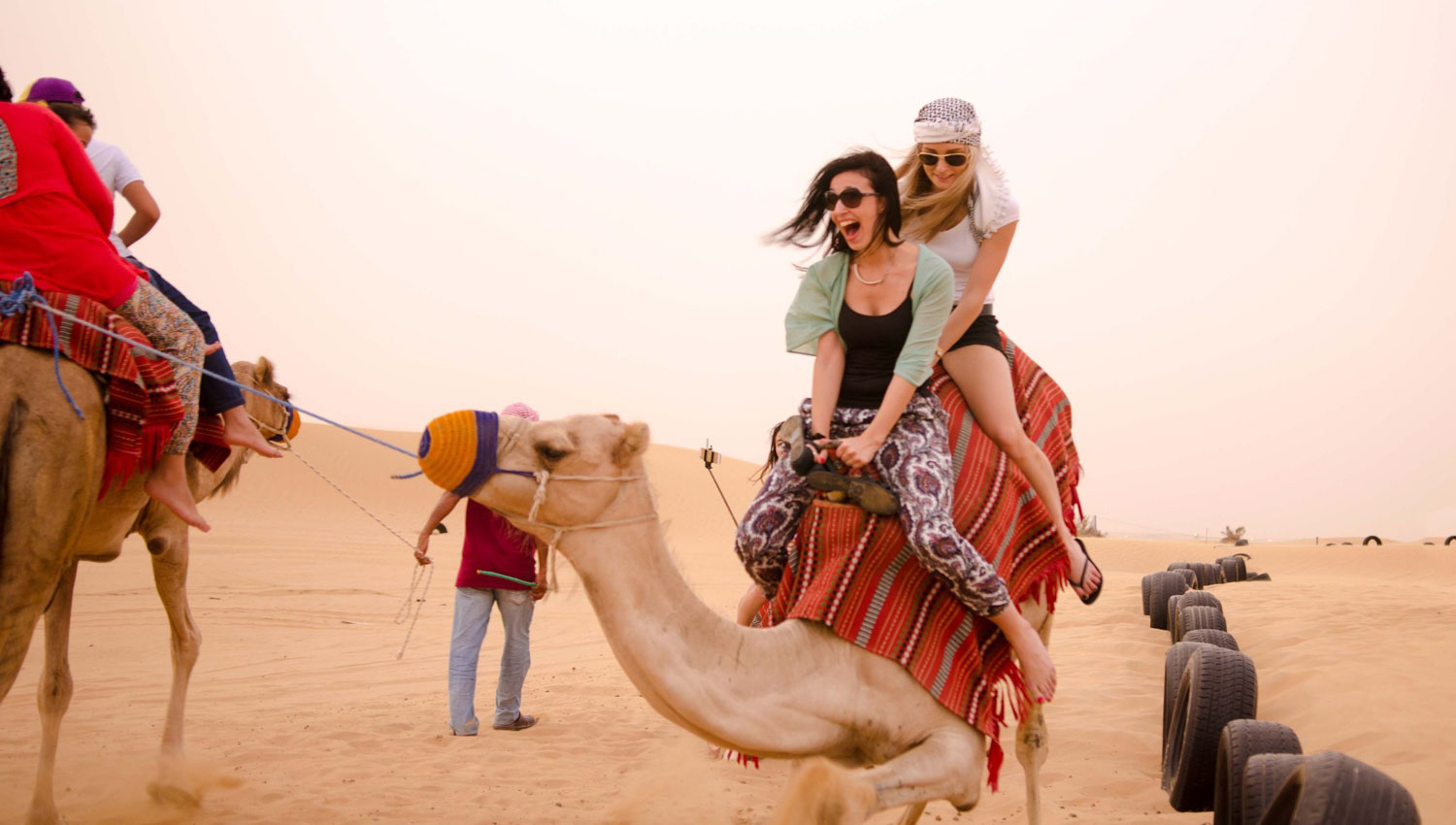 Desert Safari Dubai , How to Choose the Best And cheapest